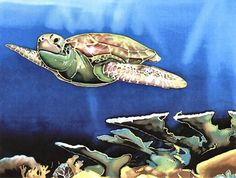 Artist Sherrill Schoening in Florida. Different types of art, mouse pad, tiles, painting, etc. and very affordable. Animal Totems, Types Of Art, Turtle, Art Pieces, Sea, Tiles, Florida, Painting, Animals