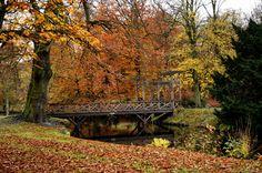 Autumn bridge by Terrence Pellikaan on 500px