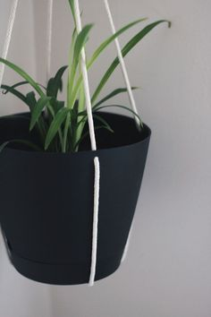 How To Make Your Cheap Plastic Planters Look High End 640 x 480
