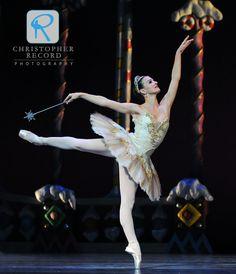 Rebecca Carmazzi is the Sugar Plum Fairy Sugar Plum Fairy, Grace Beauty, Modern Dance, Dance Pictures, Dance Photography, Ballerinas, Dancers, Tutu, Bands
