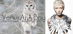 >>New Post! #Androgyny #VenusAsABoy #sHE Music: Björk http://susofercort.wordpress.com/