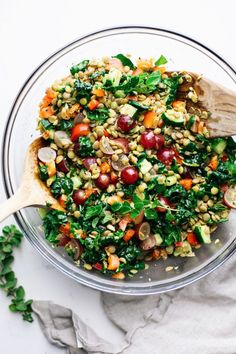 The most delicious crunchy lentil salad! Packed with veggies, sweet grapes, and roasted hazelnuts – then topped with a simple yet flavorful lemony herb dressing. It is filled with a balanced taste, cr Lentil Salad Recipes, Healthy Salad Recipes, Vegetarian Recipes, How To Roast Hazelnuts, Vegan Dinners, Nutritious Meals, Lentils, Veggies, Vegetarian