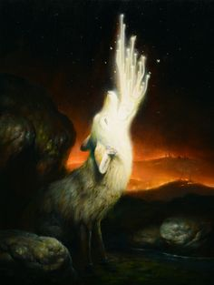 MARTIN WITTFOOTH'S TOOTH AND CLAW