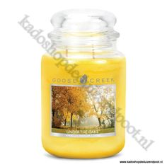 Under the Oaks Goose Creek Candle  Large Jar