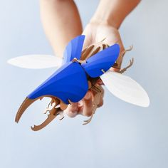 Hercules Beetle Kit - The fascinating world of insects inspired Assembli to create a new collection of paper sculptures. Construct the precision cut paper and cardboard parts into a beautiful interior item. All the skeleton parts, wings and body parts are well preserved inside this 3D puzzle kit.