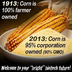 2013: 90% of fresh corn is genetically modified | eat organic or local non-GMO | quit messing with my food