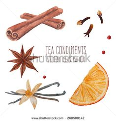 Tea spices: cinnamon sticks, star anise, vanilla. Watercolor isolated illustrations set. Vector hand drawn food objects - stock vector