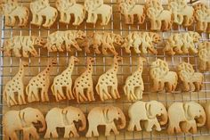 Animal Crackers*(cookie cutters from William Sonoma)2-1/2 c plain flour,  1 tsp baking powder,1/2 tsp salt,  1/8 tsp freshly grated nutmeg,1/8 tsp mace,1-1/2 sticks unsalted butter,  1 c sugar,1 egg,1 tsp vanilla.Mix all ingredients.Preheat 350,line cookie sheet w/ parchment paper.Dip cutter in flour before cutting out cookie.Bake 14 mins til lt golden brown.2 dozen cookies