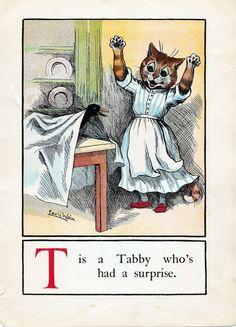 A CAT ALPHABET - T