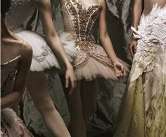 The nutcracker ballet - love that swan detail on the right!