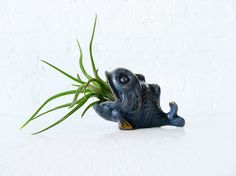 Air Plant Garden  Moby Fish Whale  Brass Patina by EarthSeaWarrior