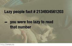 lazy!