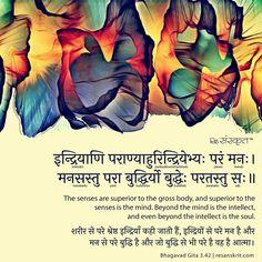 bhagavad gita karma yoga shlok explained  sanskrit quotes