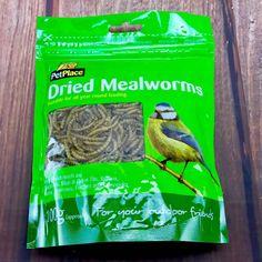 Dried Mealworms Wild Garden Bird Lizard Hedgehog Reptile Fish Meal Worm for sale online Worms For Sale, Meal Worms, Great Tit, Reptiles, Hedgehog, Foods, Fish, Garden, Ebay