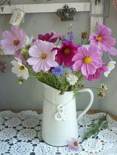 Beautiful Flower Arrangements, Floral Arrangements, Beautiful Flowers, Cosmos Flowers, Wild Flowers, Orquideas Cymbidium, Annual Flowers, Zinnias, Flower Seeds