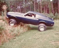 Off road Mustang TRAR.... (found on the web for TRAR Tue's by www.encinitasford.com)
