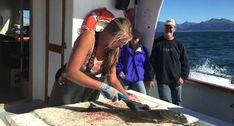 Como Arranjar Um Peixe Inteiro Em Apenas Um Minuto
