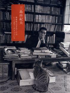 Kitty watching over Mishima's work.