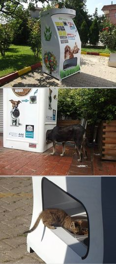 Recycling bin in Istanbul will dispense food for stray animals whenever you deposit bottles! - I wish these were everywhere...
