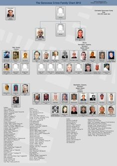 Genovese Crime Family Leadership Chart - New York Mafia