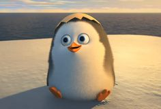 Craft eye suggestions for characters from the new Penguins of Madagascar movie.