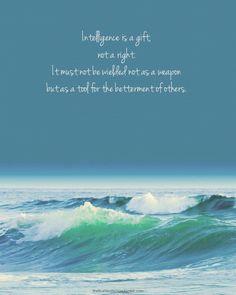 Erudite Manifesto~Divergent~ ~Insurgent~ ~Allegiant~