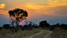 dusk and dawn – Bruna Photography Dusk Till Dawn, Celestial, Sunset, Photography, Outdoor, Outdoors, Photograph, Fotografie, Photoshoot