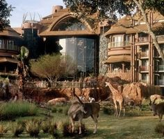 Disneys Wild Animal Kingdom Lodge
