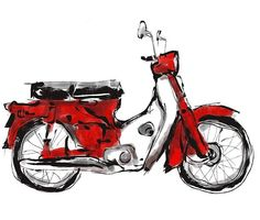 Electric Cargo Bike, Honda Cub, Quick Sketch, Scooters, Painting & Drawing, Cubs, Skulls, Illustrator, Digital Art