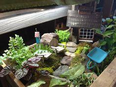 Gardeneru0027s Supply Garden Centers: Burlington And Williston, VT
