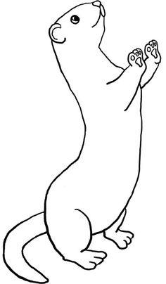 ferret-stencil-pattern-1.jpg (379×650)