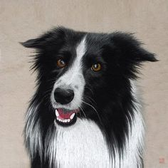 Black & White Border Collie #Beautiful #Handmade #Silk #Embroidery #Art 34223 https://www.amazon.com/King-Silk-Art-Embroidery-Decoration/dp/B00WARKX3U Dogs are prominent in Chinese culture, they are the 11th sign in the Chinese zodiac and represent people who are honest, faithful and sincere. Symbolically, dogs also represent the respect for tradition and honor as well as the service of others. In Feng Shui, dogs are powerful protection charms. Dog images are often placed in pairs at…