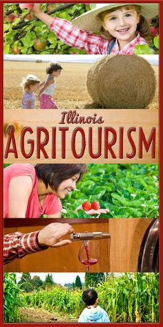 In need of some family day-trip inspiration? Check out all the agritourism opportunities around your area!
