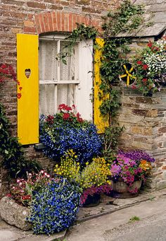 A happy window in Polperro, Cornwall, UK - lots of flowers and hearts in the yellow shutters! ~ by John Galbo