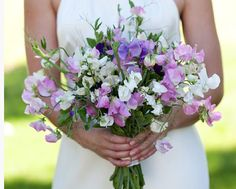 Talking Flowers: the Symbolic Message of Your Favorite Flowers. – Sweetgrass Social