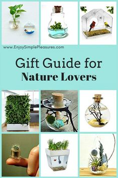 This Gift Guide for Nature Lovers lists 9 unique, low maintenance, affordable, space saving gift ideas: wearable ecosystems, living walls, terrariums, etc.