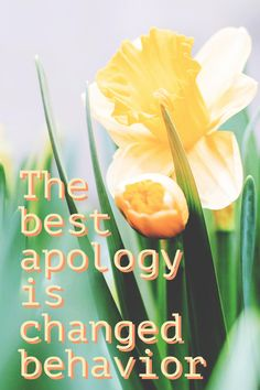 """The best apology is changed behavior. No one wants to hear """"I'm sorry"""" over and over for the same offense. My alcoholism and drug addiction behavior always led me to apologizing with no effort to change. Signs Of Drug Abuse, Substance Abuse Counseling, Addiction Recovery Quotes, Stop Overeating, Central Nervous System, Under The Influence, Over Dose"""