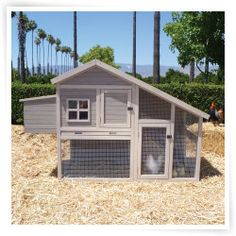 Precision Extreme Cape Cod Chicken Coop with Nesting Box and Roosting Bar