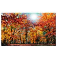 @Overstock - This unframed canvas art showcases an autumn forest scene that will lend the tranquility of nature to your d_cor. The large, horizontal landscape print will arrive gallery wrapped and ready to be hung. The canvas measures 30' x 47'.http://www.overstock.com/Home-Garden/Philippe-Sainte-Laudy-Camouflage-Canvas-Art/6441482/product.html?CID=214117 $107.99