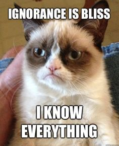 Ignorance is bliss I know Everything - Grumpy Cat