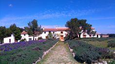 Landgoed in binnenland (uur van) Valencia. B&B, vakantiehuizen, glamtent, heerlijk eten, top voor de kids (van alles te doen en te beleven, zwembad) & jezelf (yoga, tapas workshop, sporten, lekker mee eten) http://www.mrsnomad.nl/accommodaties/landgoed-valencia-ben-spanje/