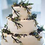 Blueberries on your wedding cake, a great way to tie Maine into your day. Baker: Sweet Sensations See more cakes at: http://realmaineweddings.com/Planning-Tools/Maine-Cakes.aspx