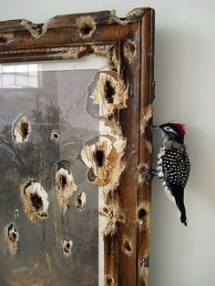"""Valerie Hegarty (*1967), """"First Harvest in the Wilderness with Woodpecker"""" (2011) (detail) - who wouldn't wince seeing this ill-used piece of art? what an awesome idea!"""