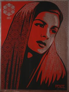 Art and Illustrations by Shepard Fairey