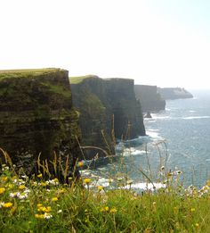 The famed Cliffs of Moher in County Clare. It's awesome and scary, almost hypnotic. These friendly sheep were grazing along the edge when I was there. The edge has no safety barrier, so watch your step, it's a long way down.