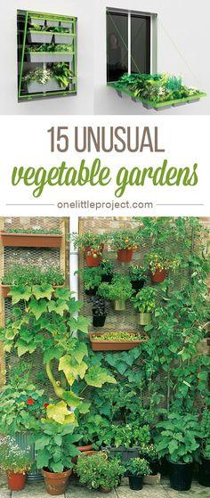 Small vegetable gardens on pinterest vegetables garden for Unique vegetable garden designs