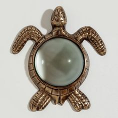 Turtle Magnifying Glass at Cost Plus World Market >> #WorldMarket Gifts for him