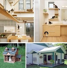 Grey, Yellow, Black Cat House Plan | Cat house plans, Cat houses ...
