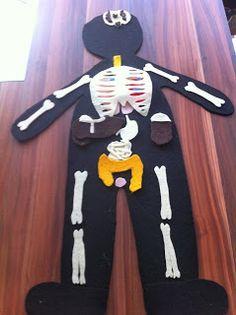 can ve cerenin oyun günlüğü: vücüt anatomisi iç organlar