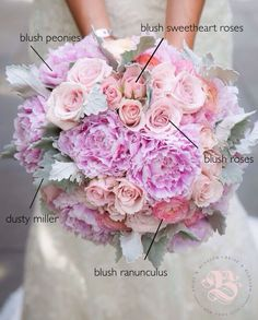 Recipe for a romantic, rounded, lush bridal bouquet with antique charm: Petal-dense blooms-- roses, sweetheart roses, ranunculus and peonies-- in shades of blush, set off by velvety, silver-green dusty miller leaves. #weddingflowers by Bride & Blossom. Photo by Emma McDonald Weddings at Brooklyn Botanic Garden.